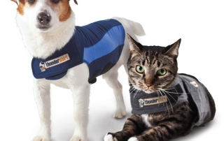 Thunder shirt dog and cat