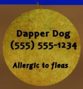 Your dog's tag should always state his name, your cellphone number, and any critical medical information.