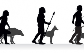evolution of man and dog