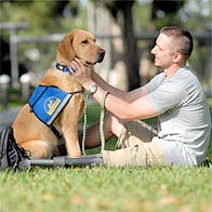 First Lieutenant Jeffrey Adams & Service Dog, Sharif. Assistance (or service) dogs, unlike military working dogs, help military personnel in their civilian lives. Courtesy Canine Companions for Independence (cci.org).